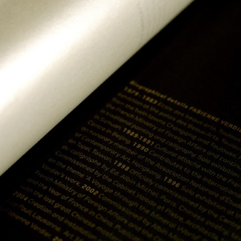 fouinzanardi - fz_print.books_fabienneverdier3
