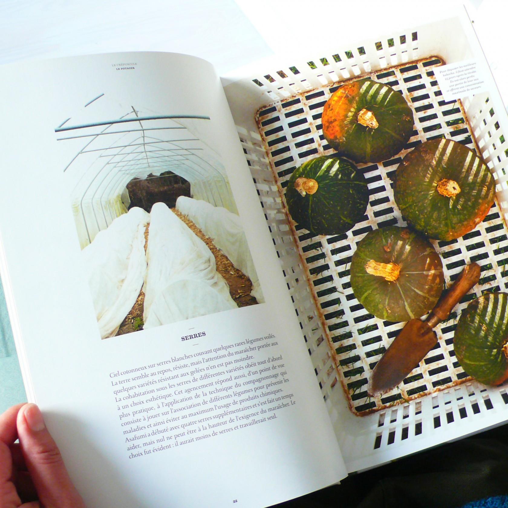 fouinzanardi -  fz_print.books_lamartiniere3